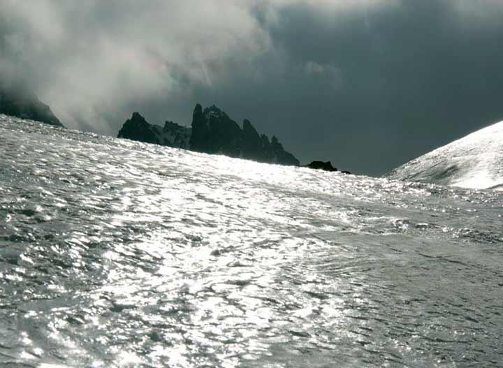 Yüzey buzu