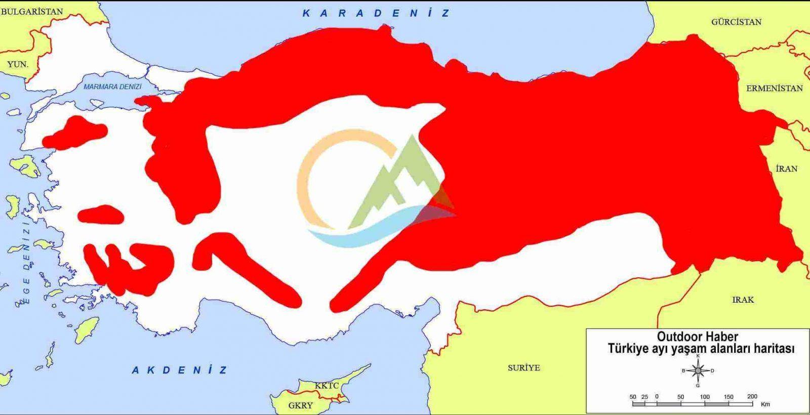 Türkiye ayı haritası