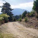Saint Paul yolu Dikmen çiftliği Barla parkuru