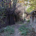 Saint Paul yolu Barla köyü