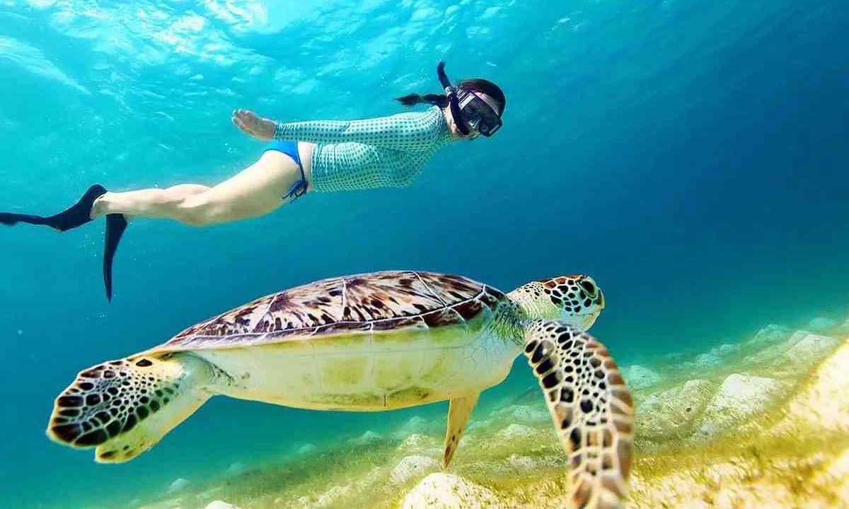 Şnorkelle yüzme (Snorkelling) nedir?