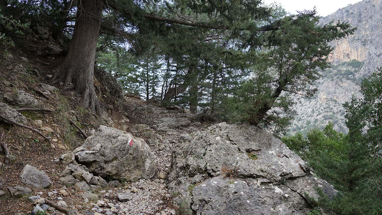 Kabak Alınca vadi