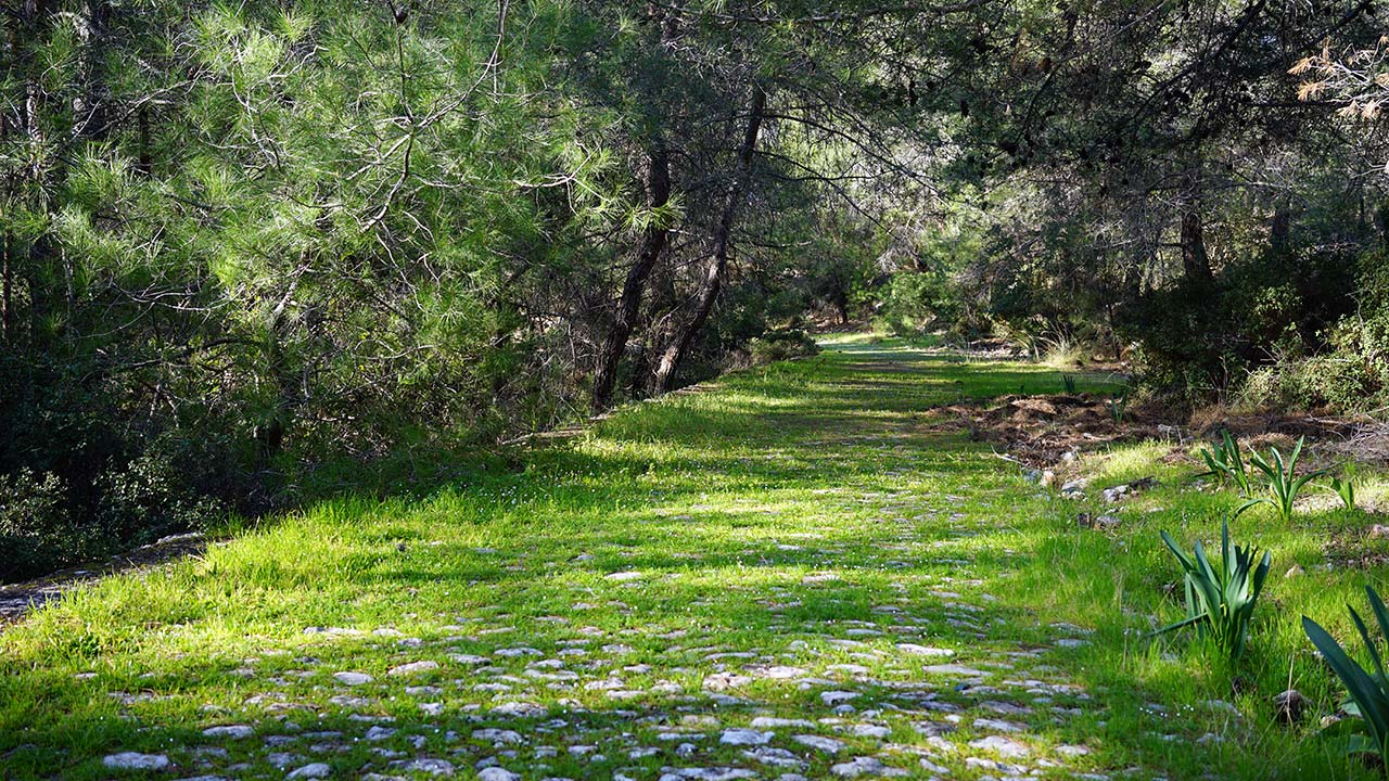 Fethiye antik yol